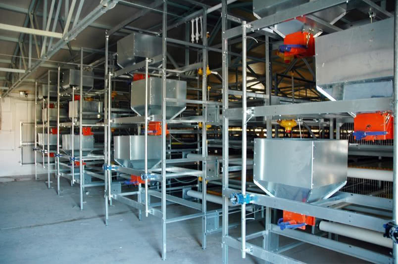Broiler Cage Systems Technical Specifications