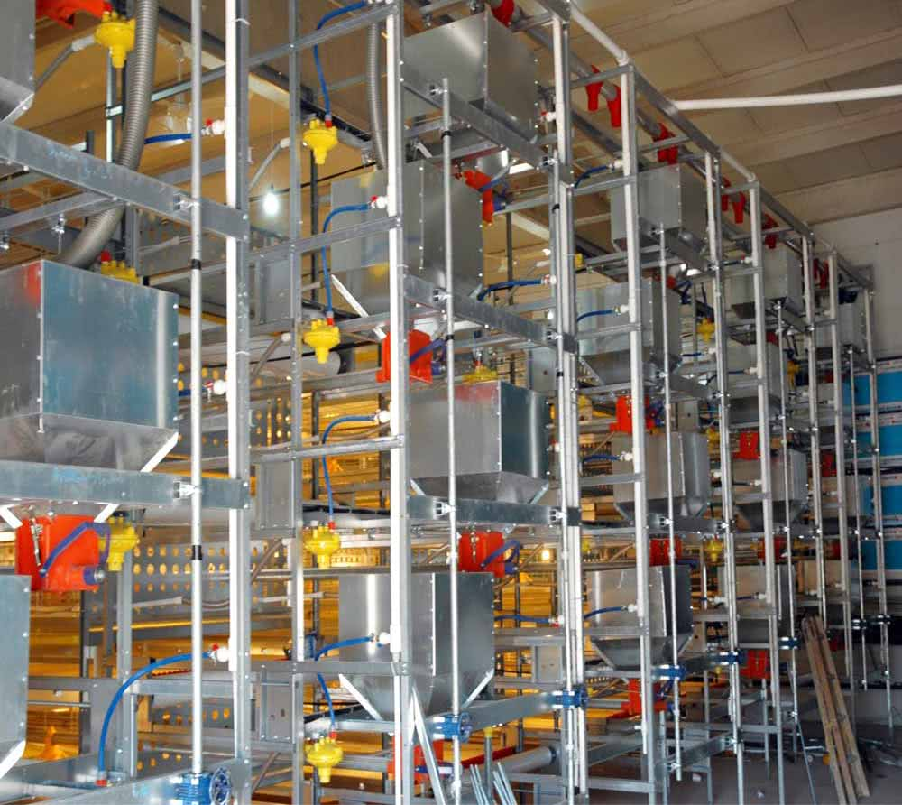 Layer Cage Systems Water Drinking System