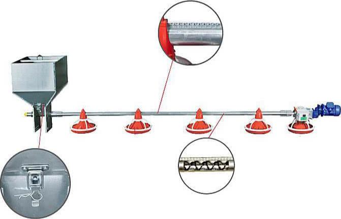 Spiral Feeding Systems Feeding Chain and Model